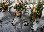 Vacanze Pasqua famiglia: città tradizioni