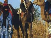 Firme parziali l'accordo Algeri riguardante Mali/La ratifica entro marzo