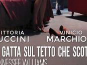 """5-15 marzo 2015 gatta tetto scotta"""" Teatro Ambra Jovinelli"""