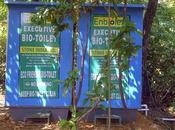 Goa, scempio sull'isolotto Palolem