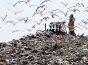 rivincita dopo vergogna: Regione Campania vince premio prevenzione rifiuti 2015