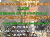 Rinascere scegliendo ritmi della natura corso Erboristeria Benedetto Tronto (AP)