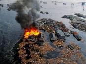 Fukushima, dopo anni contaminazione ferma