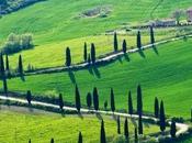 cuore della Toscana, mondo ancora misura d'uomo... Chianti