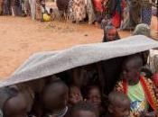 rifugiati mondo sono 51,2 milioni, ogni secondi persona deve abbandonare propria casa