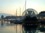 Genova, Botteghe Storiche Internet