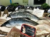 fish quay North Shields
