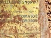 Egitto. Dagli scavi archeologici barattoli prodotti Napoli
