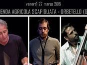 Trio Jazz Sferra Tittarelli Rehmer palco della Scapigliata venerdi' marzo 2015 Orbetello (GR)