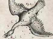 Svelato mistero dell'esplosione stellare 1670