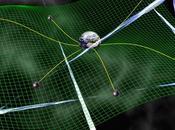 caccia onde gravitazionali