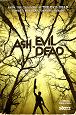 """""""Ash Evil Dead"""": poster promozionale"""