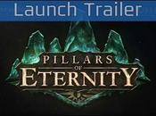 Pillars Eternity Dove ruolismo vive