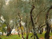 Bari, Salone dell'olivo, dell'ambiente, della salute dell'innovazione.