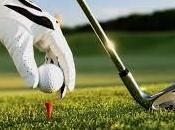 Santis Meroni Gagliolo Golf