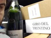 Bike TRENTO Wine