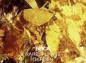 [12rec.064] rare plants garden-