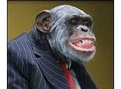 Esseri umani invecchiano come scimpanzè gorilla