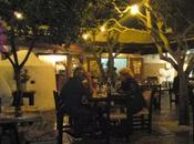 Ibiza: Oasi primavera
