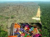 MULTINAZIONALI Ecco prodotti comune contribuiscono alla deforestazione