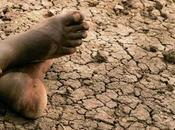 Politiche verdi l'Africa oggi improrogabile necessità relazione mutamenti climatici
