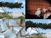 Poesie comporre: premi scadenza dalla Bassa Salento