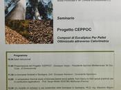 Progetto CEPPOC: nasce Sardegna modello sviluppo sistemico d'uso sostenibile delle biomasse