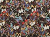 Focus Valentino Camubutterfly '15.