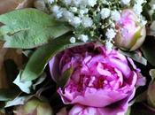 miei fiori preferiti