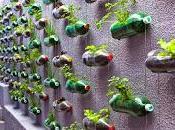facili modi riciclare Bottiglie Plastica