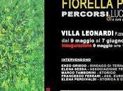 """Fiorella Pierobon """"Percorsi luce"""". Santo Sepolcro Francigena."""