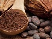 Expo Milano 2015 Cluster Cacao Cioccolato