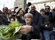 Radicali, Polizia sequestra piantine marijuana casa della segretaria nazionale Bernardini