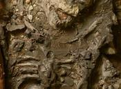 scheletro diluvio esposizione Philadelphia
