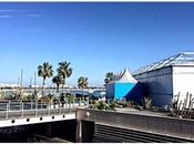 Speciale Festival Cannes 2015: ricordi