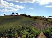 Gianni Mura, vini Maremma eventi chiantigiani Wine Station