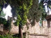 bellezza immersa verde: Giardino Torrigiani Firenze