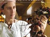01/06/2015 Sette proposte l'agricoltura sostenibile futuro