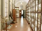 Visita all'Accademia Fisiocritici