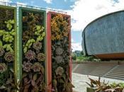 Creatività paesaggio: Festival Verde