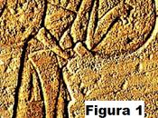erano quale periodo della storia Mediterraneo dell'antico Egitto, appaiono Shardana?