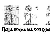 [Recensione] isole Caledonya Alessandro Gatti Mark Menozzi