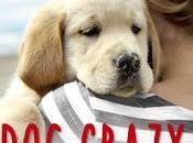 """Anteprima: """"DOG CRAZY"""" Donohue"""
