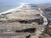 Tsunami Giappone: come dare mano