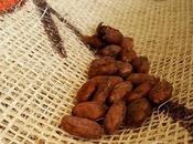 Terre cacao: mondo dolce raffinato
