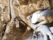 """restauro della """"tomba d'ij rat"""""""