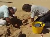 Scheletro umano ritrovato nella Valle Templi Agrigento