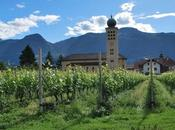 Sapori dell'Alto Adige: eccellenze della d'Ultimo