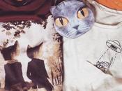 Cose gatti…