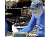 Merlin, delfino impara parlare iPad